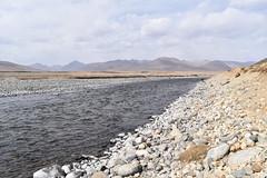 MAQ_0443 (MolviDSLR) Tags: deosair national park skardu gilgit baltistan northern areas pakistan brown bear wild life scenery landscape