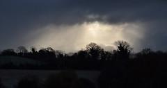 winter lighting (conall..) Tags: dull sun gloom scene