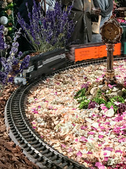 HTS-14 (Peter Parides) Tags: unitedstates christmas trains newyorkbotanicalgardens new york city newyork