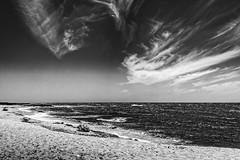 Vento e mare mosso (Vanda Guazzora) Tags: biancoenero mare natura spiaggia nuvole ombrellone