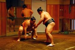 Tokyo - Sumo Azumazeki stable (seetheworldpics) Tags: japan tokyo sumo japon sumotori azumazeki sumoazumazeki azumazekistaple