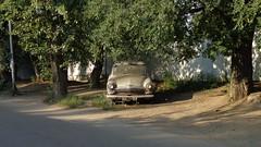 DSC06387 (Dmitry Shlomin) Tags: abandoned car gaz volga 1965 m21 gaz21