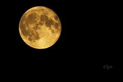 2015 Blood moon (jeho75) Tags: moon germany deutschland blood sony tokina 500 18 6000 rmc ilce blutmond