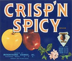 """Crisp N Spicy • <a style=""""font-size:0.8em;"""" href=""""http://www.flickr.com/photos/136320455@N08/21283893408/"""" target=""""_blank"""">View on Flickr</a>"""