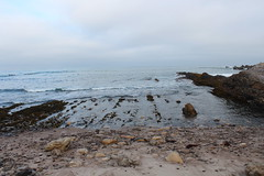 (jessica wilson {jek in the box}) Tags: lososos wander beachwalking beachcombing 2015 montaadeoro aug15 bluffstrail goinwiththeagogos slolife