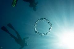 20150923-DSC_5564.jpg (d3_plus) Tags: sea sky fish beach japan scenery underwater diving snorkeling  shizuoka    apnea izu j4  waterproofcase    skindiving minamiizu       nikon1 hirizo  1030mm  nakagi 1  nikon1j4 1nikkorvr1030mmf3556pdzoom beachhirizo misakafishingport  1030mmpd nikonwpn3 wpn3