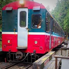 2015-10-25 11.51.42 (pang yu liu) Tags: travel train 10 oct 阿里山 旅遊 alishan 2015 火車 十月