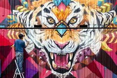 Colourful eyes (fernando_gm) Tags: street people man color colour art 35mm graffiti nikon tiger zaragoza tigre d7000