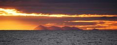 Golden Isle 2