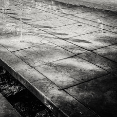 20151004-0279-Edit (www.cjo.info) Tags: 11tharrondissement 11èmearrondissement bw boulevardrichardlenoir europe europeanunion france m43 m43mount microfourthirds nikcollection olympus olympusomdem10 panasonic panasonicleicadgsummilux25mmf14asph paris popincourt silverefexpro silverefexpro2 westerneurope blackwhite blackandwhite digital flora fountain garden monochrome park plant technique water exif:focallength=25mm exif:lens=leicadgsummilux25f14 geocountry exif:make=olympusimagingcorp geo:lat=48855103333333 camera:model=em10 geostate exif:model=em10 exif:aperture=ƒ56 exif:isospeed=200 camera:make=olympusimagingcorp geocity geolocation geo:lon=2370255