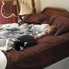 Lazy Em & Cina (ShanMcG213) Tags: christmas cats cat toddler catnap sleepy lazy sleepyhead em myniece emmarose cina sleepycat blackandwhitecat lazycats whiteandblackcat lifewithemmarose