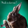 Pets are not toys (Jeric Santiago) Tags: pet rabbit bunny animal toys conejo responsibility lapin hase kaninchen うさぎ 兎 winterrabbit