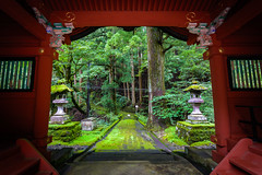 Nikko (afrigole) Tags: travel red summer vacation tree green nature japan garden temple tokyo holidays shrine asia traveller tokina   nikko     traveler  aroundtheworld