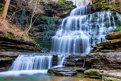 Short Springs SNA - December 31, 2015 (mikerhicks) Tags: winter usa nature landscape geotagged outdoors photography unitedstates hiking tennessee waterfalls tullahoma lakehills tennesseestateparks machinefalls geo:country=unitedstates camera:make=canon exif:make=canon shortspringsstatenaturalarea geo:state=tennessee exif:focallength=18mm tamronaf1750mmf28spxrdiiivc exif:lens=1750mm exif:aperture=ƒ10 machinefallsbranch geo:city=tullahoma geo:lon=86179166666667 geo:lat=35412778333333 exif:isospeed=250 canoneos7dmkii camera:model=canoneos7dmarkii exif:model=canoneos7dmarkii geo:lat=3541289833 geo:location=lakehills geo:lat=3541274500 geo:lon=8617925667 geo:lon=8617929667