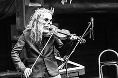 Violin Skull, 溪頭自然教育園區