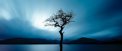 Lonely tree (Blue Kiwi Photography) Tags: lochlomond scotland water sky slowshutterspeed scottishlandscapes landscape waterhills waterscape trees tree mountain trossachs