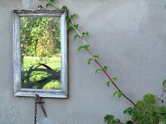 Spiegel-Bild (MKP-0508) Tags: offenegrten rheinhessen sptsommer september offenegrtenrheinhessen spiegel bild spiegelbild miroir mirror garten jardin garden