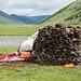 Fezes de iaque usadas como combustível