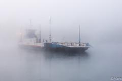 Quand surgit le bac (Nu Mero) Tags: objet d bateau rhin grandried brouillard riviere brume etang fleuve lac ried rhinau alsacechampagneardennelorrain france alsacechampagneardennelorraine fr
