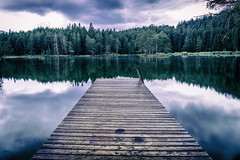 landing stage into nowhere (Steve P Photography) Tags: cold blue kalt blau einsam lonely lake see steg landing stage trees bume wald forest post process canon eos 6d vf ff follformat fullframe ef 24mm l objektiv lense new gear neueausrstung sterreich austria