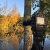 Patience..... (branty16) Tags: d7200 autumn sunlight goldenhour intervalmeter tripod wildlife patience zoom 55300mm nikon
