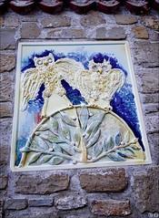 Owls (gwennan) Tags: walks nature autumn vacation piran slovenia pirano slovenianistria outdoor
