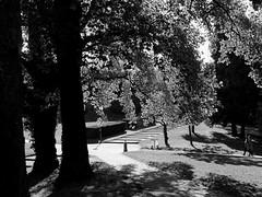 Parc de la Butte du Chapeau Rouge (Clothaire Legnidu) Tags: paris nb bw bn noiretblanc butte chapeau rouge parc park fuji x20