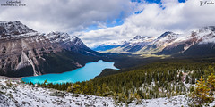 Colorful- October 11, 2016 (zachary.locks) Tags: ab above alberta alternate banff blue canada capped clear colorful cy365 fresh high hike lake long mound national overlook pack park peyto pretty snow summit trees up