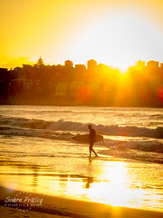 Silhouette of a Surfer (Simon Pratley) Tags: amanacer anda andando australia beach bondi bondibeach culture gold golden goldenhour landscape light luz morning person playa reflections seascape serene silhouette sunrise surf surfboard surfer surfing sydney urbanscape wave waves yellow elmar lacosta ngc