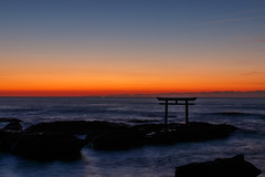 Dawn of the pacific ocean (t.kunikuni) Tags: jp             japan ibaraki ibarakiken oarai oaraimachi oaraiisomaejinjashrine oaraicoast pacificocean torii sea ocean sunrise dawn