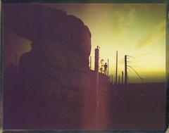 The Golden Moment (Bastiank80) Tags: sunset outdoor 79 polaoid end start roidweek moment golden