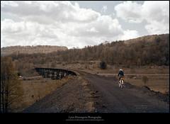 Humphrey's Trestle from the West, 1959 (Sherwood Harrington) Tags: nyow ow upstatenewyork chenangocounty guilford parker trestle 1959 vintageslide railroad bridge