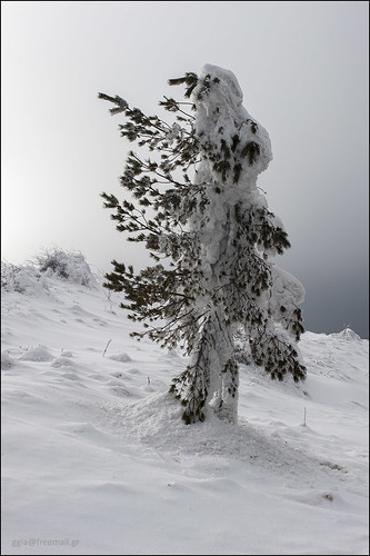 6 March 2011: Balkan mountains, Bulgaria.