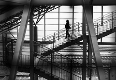 (Magdalena Roeseler) Tags: street strassenfotografie streetphotography candid zurich lines geometry bahnhof trainstation people stairs walk olympus