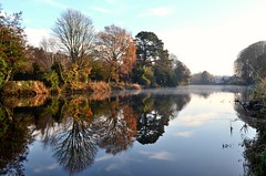 River  Reflection (kevindaly24) Tags: reflections riverlee rivers natural nature nikon1755f28 nikondslr colors