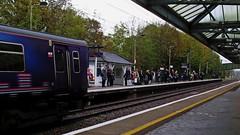 Zen Train Travel: Hertford North Station (Mike Cook 66) Tags: zen train travel commuter canonpowershotg16 pointshoot hertfordnorthstation moorgate kingscross class319 hertfordloop