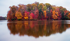 Like an Island in Time (Jon Ariel) Tags: collins hill lake gwinnett county georgia metro atlanta fall autumn colors water