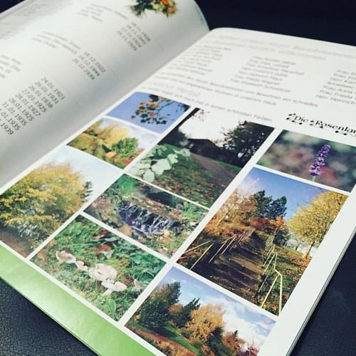 Herbstausgabe #Broschüren #broschüre #broschueren #hauszeitung #hauszeitungen #jpswerbung #printmedien #print #druckmedien #druck #magazine #firmenzeitung #firmenzeitschrift #zeitschrift #zeitschriften #printisnotdead #prints #printdesign #printing #print