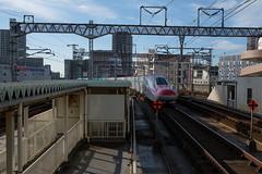 20161025-DSCF3008.jpg (kato_masashi) Tags:      jp