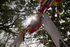 Prayer flags at Lumbini
