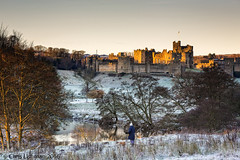 Walking in a Winter Wonderland (Chris Lishman) Tags: chrislishman lishman chrislishmanphotography alnwick winter aln riveraln dog dogwalker frosty castle harrypotter northumberland landscape morning dawnlight goldenlight