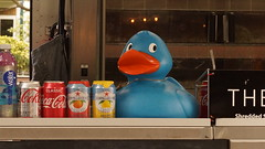 Soft Drink selection and Duck (Quality Gate 5b) Tags: sonya65 carlzeiss1680mm paulhamesstreetphotographyworkshop shoreditch london e1
