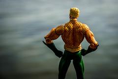 Aquaman (misterperturbed) Tags: dccomics havredegrace chesapeakebay susquehannariver aquaman jla harfordcounty dccollectibles