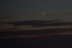 The New Moon Chases The Setting Sun (nosha) Tags: ocean sunset sea usa moon beautiful beauty monterey pacific grove pg pacificgrove moonset nosha