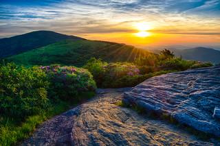 Sunset on Roan Mountain