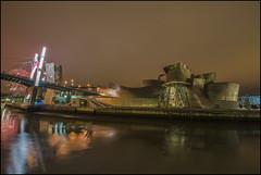 Guggenheim (Explore) (Jose Cantorna) Tags: arquitectura nikon bilbao nocturna guggenheim museo euskadi vizcaya fuegos reflejos d610