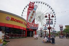 Atrakcje w Niagara Falls | Niagara Falls attractions