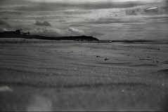 there is whiskey in the water (Technicolourgirls) Tags: summer blackandwhite beach analog 35mm sand ilford voigtlnder vf135