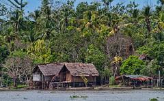 Bien Village, Sepik River, Papua New Guinea (bfryxell) Tags: papuanewguinea oceania melanesia sepikriver bienvillage