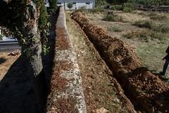 Prospección en Alcañices (Zamora) (11)